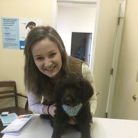 Dayton Animal Clinic - Dayton, VA - Our assistant, Manette